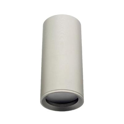 Светильник потолочный направленный модульный сатин 100мм