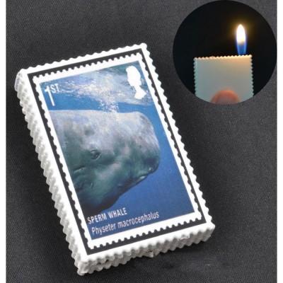 Зажигалка карманная марки (обычное пламя) №2563