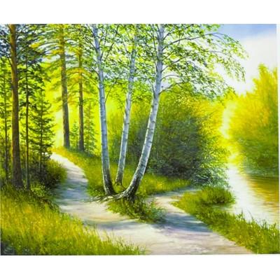 Картина по номерам 'Утро в лесу' 40*50см,крас.-акрил,кисть-3шт. арт.:6019