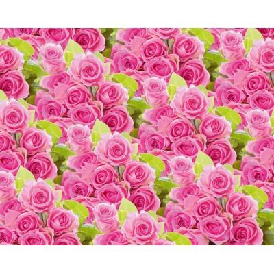 Мелованная бумага - розовые   розы , 1000х700, PVM10-55 арт.:PVM10-55