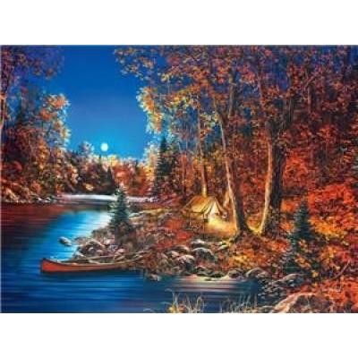 Картина по номерам 'Ночь в лесу' 40*50см,крас.-акрил,кисть-3шт арт.:8148