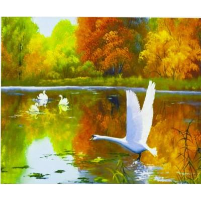 Картина по номерам на дереве 'Лебеди' 40*50см,крас.,кисти арт.:3224-D
