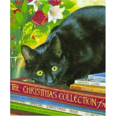 Картина по номерам 'Чёрный кот' 40*50см,крас.-акрил,кисть-3шт. арт.:8160