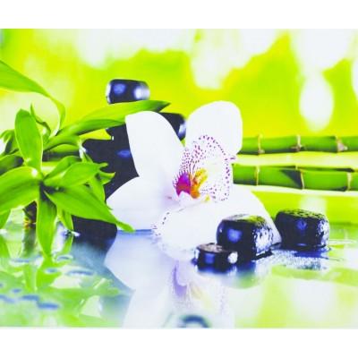 Картина по номерам 'Орхидея' 40*50см,1256 арт.:1256