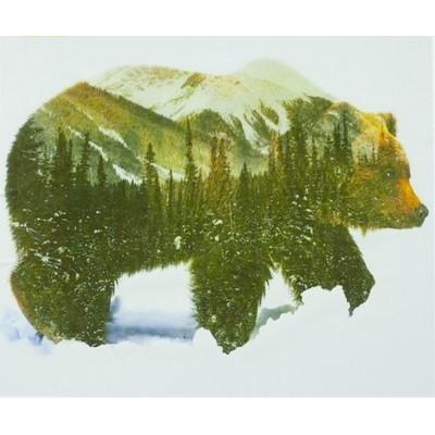 Картина по номерам 'Медведь' 40*50см,крас.-акрил,кисть-3шт. арт.:9408