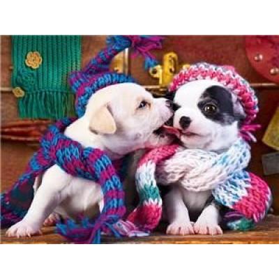 Картина по номерам 40х50,  'Влюбленные щенки' арт.:8337